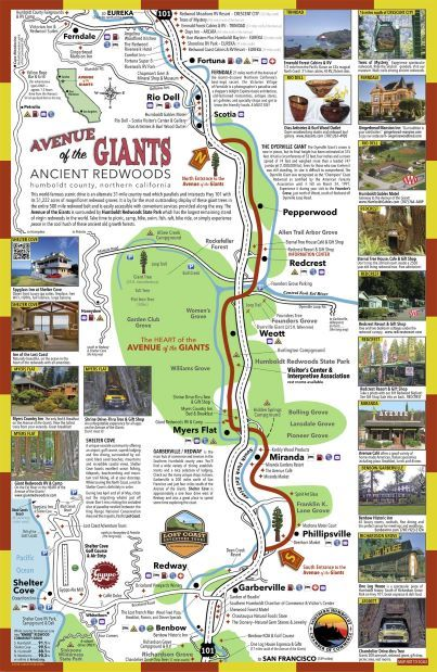 avenue of the giants map_tn